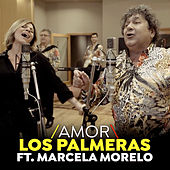 Amor (Single) von Los Palmeras