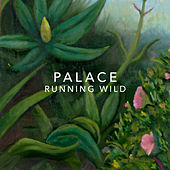 Running Wild de Palace