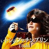 Itoshi No Puchin Pudding by Toshl