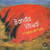 A Paixão do Forró de Banda Visual