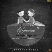 Hanoozam (Instrumental) by Amir Tataloo