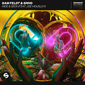 Hide & Seek (feat. Joe Housley) van Sam Feldt