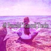 49 Peaceful Tranquil Tracks de Zen Music Garden