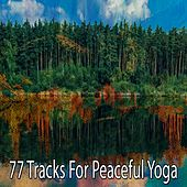 77 Tracks for Peaceful Yoga by Classical Study Music (1)