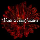 44 Auras for Calming Ambience de Study Concentration