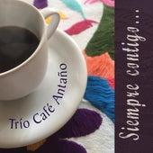 Siempre Contigo de Trío Café Antaño