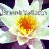 Binaurals Meditation de Binaural Beats Brainwave Entrainment