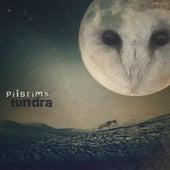 Tundra von The Pilgrims