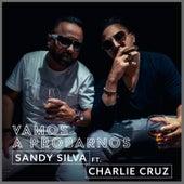 Vamos a Probarnos de Sandy Silva