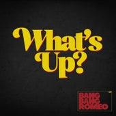 What's Up? von Bang Bang Romeo