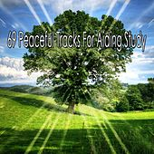 69 Peaceful Tracks for Aiding Study von Massage Therapy Music