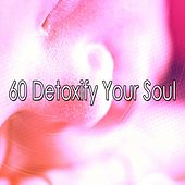 60 Detoxify Your Soul by Lullaby Land