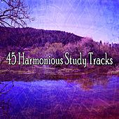 45 Harmonious Study Tracks by Meditation Spa