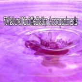 50 Natural Mind Meditation Accompaniments von Music For Meditation