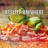 47 Sleep Anywhere de Dormir