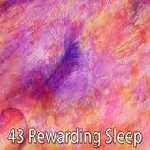 43 Rewarding Sleep de Smart Baby Lullaby