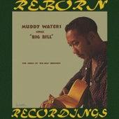 Sings Big Bill Broonzy (HD Remastered) de Muddy Waters