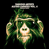 Aleteo Zapateo, Vol. 4 - Single de Various Artists
