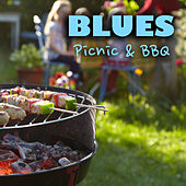 Blues Picnic & BBQ by Various Artists