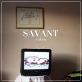 Vaken von Savant