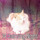 74 Calming Night by Ocean Sounds Collection (1)