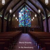 In the Sanctuary de David Krienke