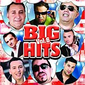 Big Hits, Vol. 6 by Various Artists