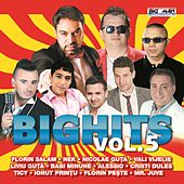 Big Hits, Vol. 5 by Various Artists