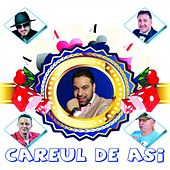Careul De Asi di Various Artists