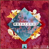 Metaform by Zita Dinasi