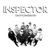 Convaleciente de Inspector