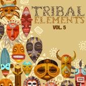 Tribal Elements, Vol. 5 di Various Artists