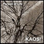 Pursuit of Life von KAOS