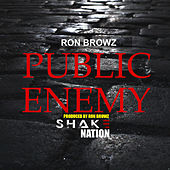 Public Enemy de Shake Nation