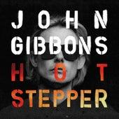 Hotstepper de John Gibbons