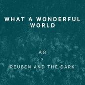 What A Wonderful World de Reuben And The Dark