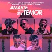 Amarte Sin Temor (Remix) von Rima