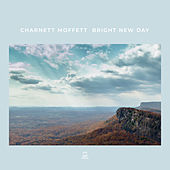 Netting by Charnett Moffett