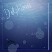 Delphinus by Adeline