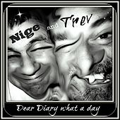 Dear Diary what a day by Nige and Trev