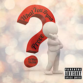 What YouTryna Prove de DeMarr Richie