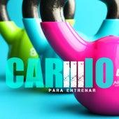 Para Entrenar, Vol. 3 von Cardio