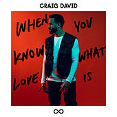 When You Know What Love Is de Craig David