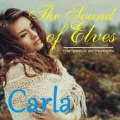 The Sound of Elves de Carla