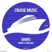 What A Feeling (Radio Edit) de Samo