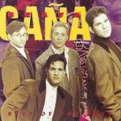 Best Of The Best de Caña Brava