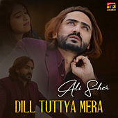 Dill Tuttya Mera - Single by Sher Ali