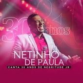 Netinho de Paula Canta 30 Anos de Negritude Jr de Netinho De Paula