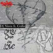Only One in Love van DJ Nicco