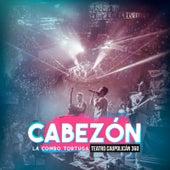 Cabezon (En Vivo Teatro Caupolican) by La Combo Tortuga